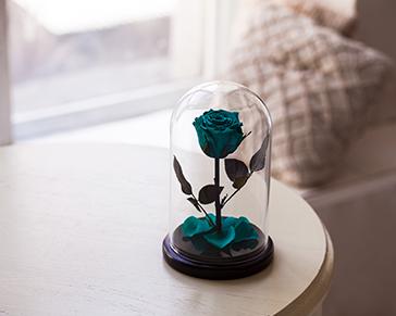Купить колбы под цветы б у купить цветы цветущие все лето