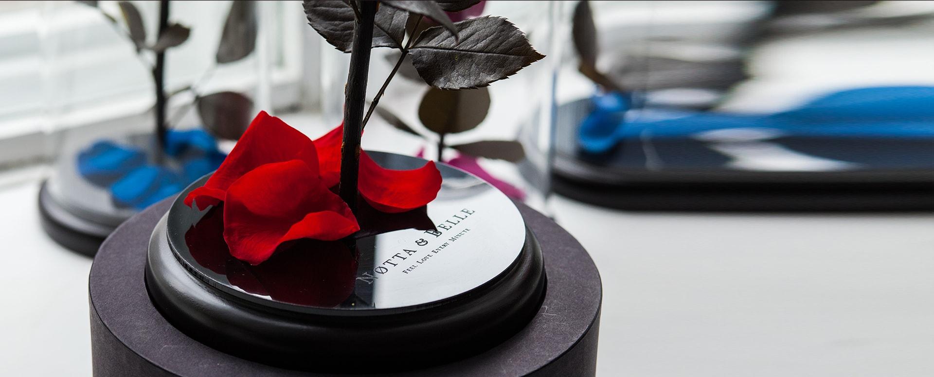 Вакуумные цветы купить в стерлитамаке заказать цветы в спб с доставкой